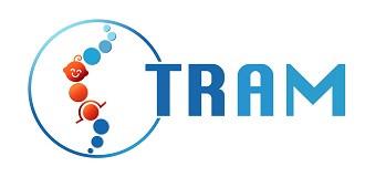 tram studie